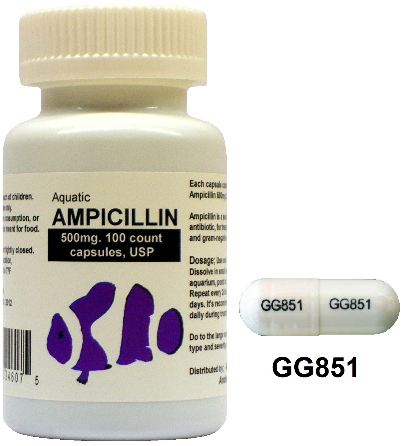 AMPICILLIN 500MG CAPSULES | Drugs.com