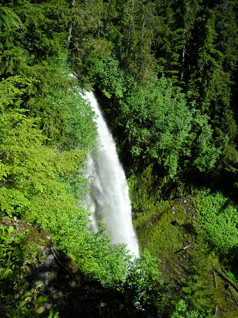 Denman Falls along St. Andrews Creek