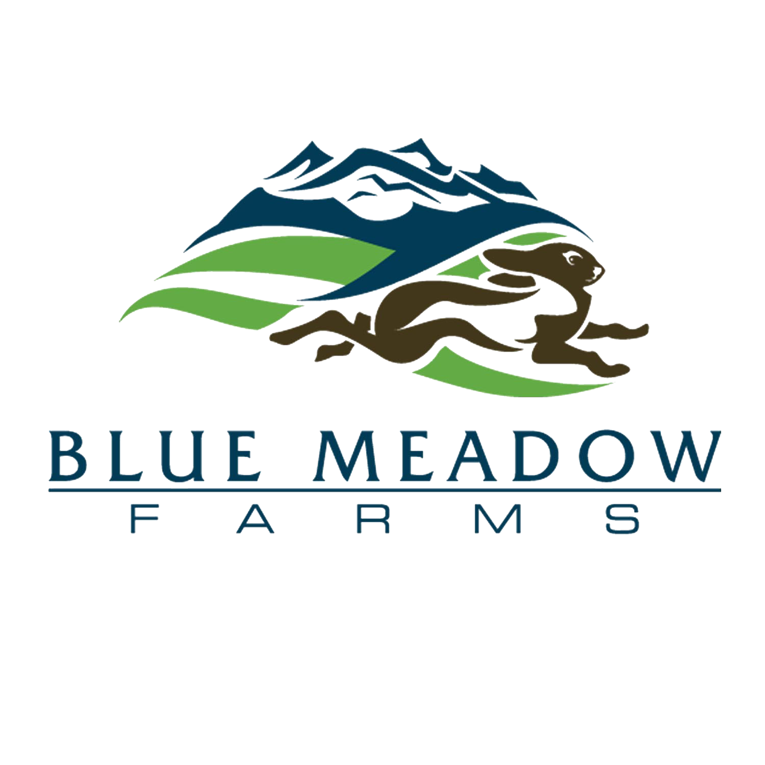Blue Meadow Farms Blog