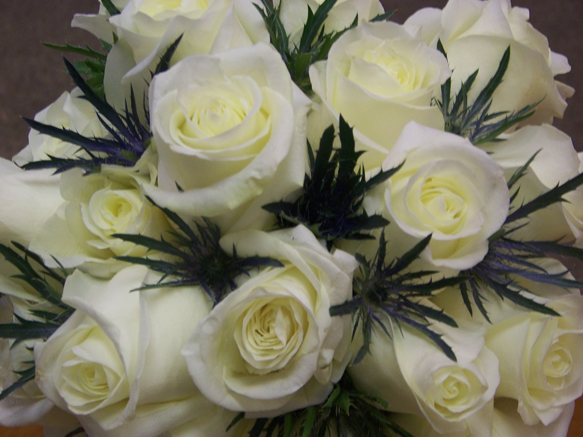 Arrangement of Rose and Thistle