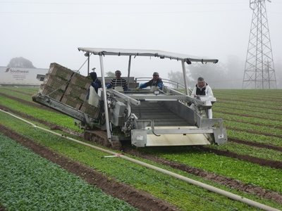 Spinach harvester has many systems but has minimal electronics to maximize reliability