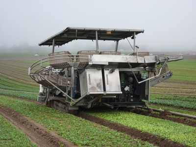 The controls on this spinach harvester are similar to those on a tank, with one joystick for each track.