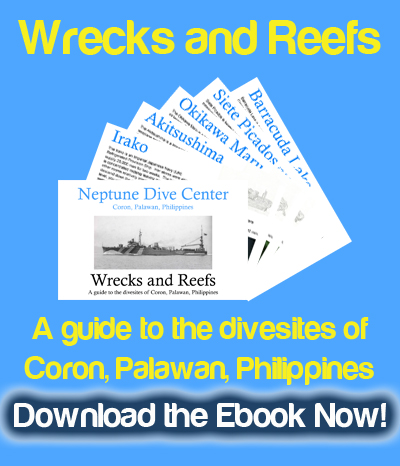 Download the only Ebook of divesites in Coron, Palawan, Philippines!