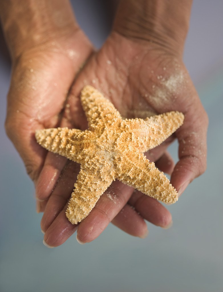 starfish carefully supported by caring hands
