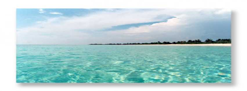 Photo of Crystal Carribean Sea