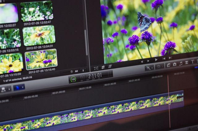 Editing screen, images of flowers