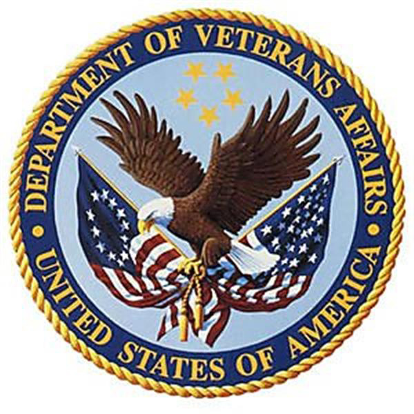 TheraTub-Walk-In-Tubs-Department-Of-Veterans-Affairs-Picture