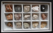 Sedementary Rock Collection Kit