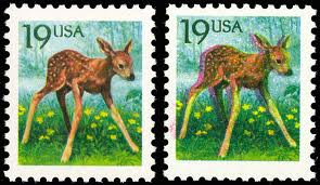 United States Fawn Error