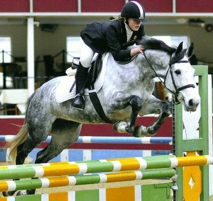 Hayley Compson, Showjumping