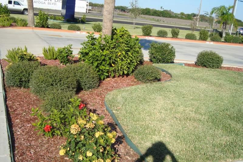Corpus Christi's Premier Yard Maintenance and Landscape Service Provider - Awesome Lawncare Corpus Christi