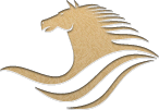 Rider's Club Logo