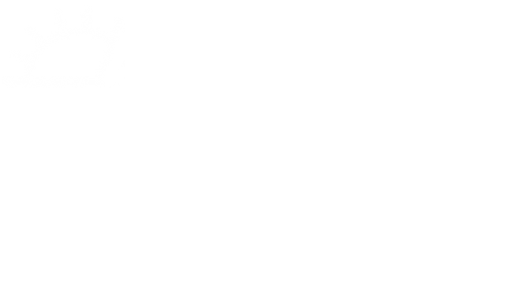 Aurora Museum Foundation