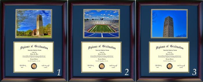 image description - Michigan State Diploma Frame