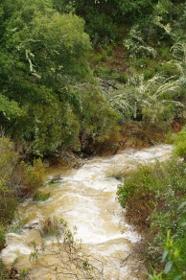 Arroyo de la Chorrera Horcajo