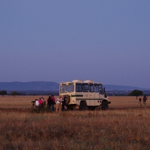 Safari en Cabañeros