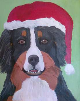 Christmas Cards with Bernese Mountain Dog