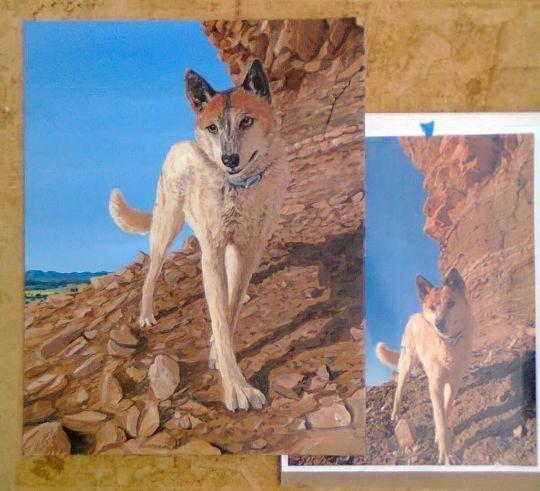 Freckles - Desert Dog Portrait
