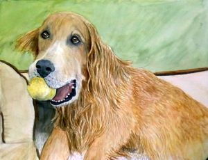 Golden Retriever with Ball Portrait