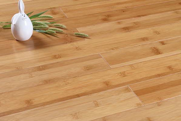 Bamboo Floor inspection