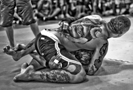 UK MMA Photography by Mark Corpe Fighters in Focus Mixed Martial Arts Fight Photos and Portraits