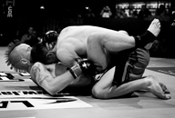 UK MMA Photography by Mark Corpe Fighters in Focus Mixed Martial Arts Fight Photos and Portraits Dan Shortman