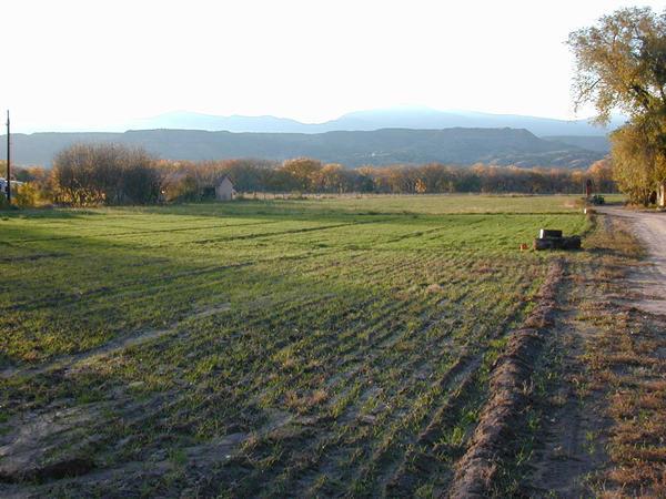 fertile land - photo #26